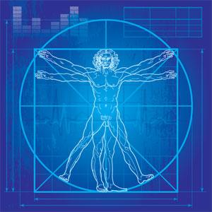 optimal human performance programs